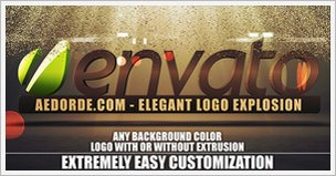 Elegant Logo Explosion