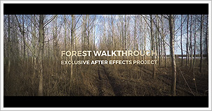 Forest Walkthrough