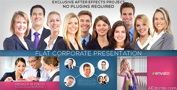 Flat Corporate Presentation
